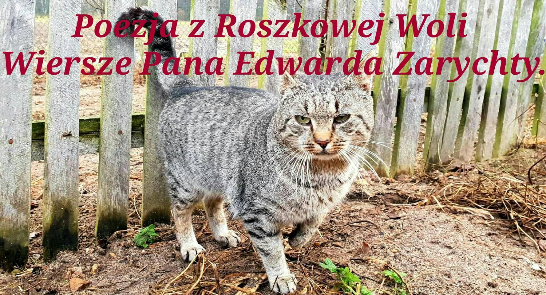 Poezja Z Roszkowej Woli Wiersze Pana Edwarda Zarychty